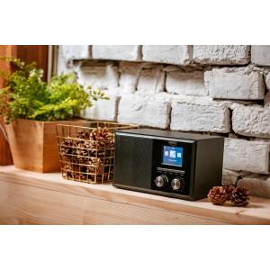 Camry Internet Radio mit DAB und 2,4-Zoll-TFT- LCD-Display