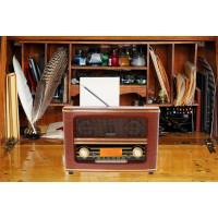 Adler Retro Bluetooth UKW Radio USB AUX-IN